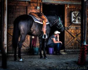 horseshow1.2