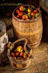 apples2.3
