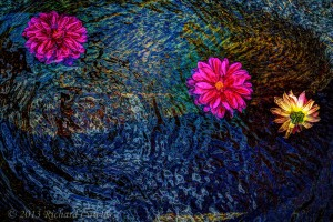 blossomsinafountain1.3