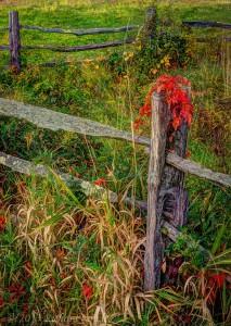 fencepost1.3