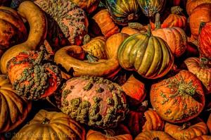 gourds1.2